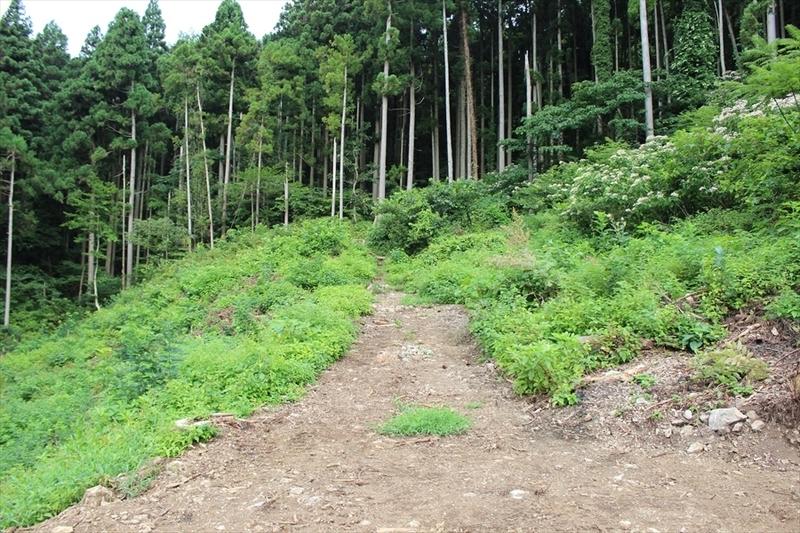 角田山五りん石コース